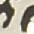 beige-schwarz-gemustert